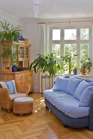 ラタン製の家具